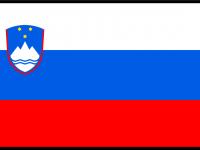 flag_of_slovenia_bordered-svg